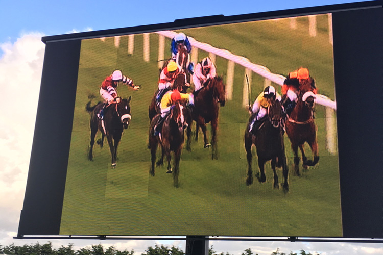 Giant screen Day at the Races